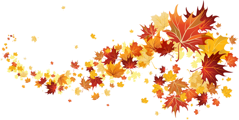 C'est l'automne ! dans f) ACTUALITES 710462hbd1nrdbfk